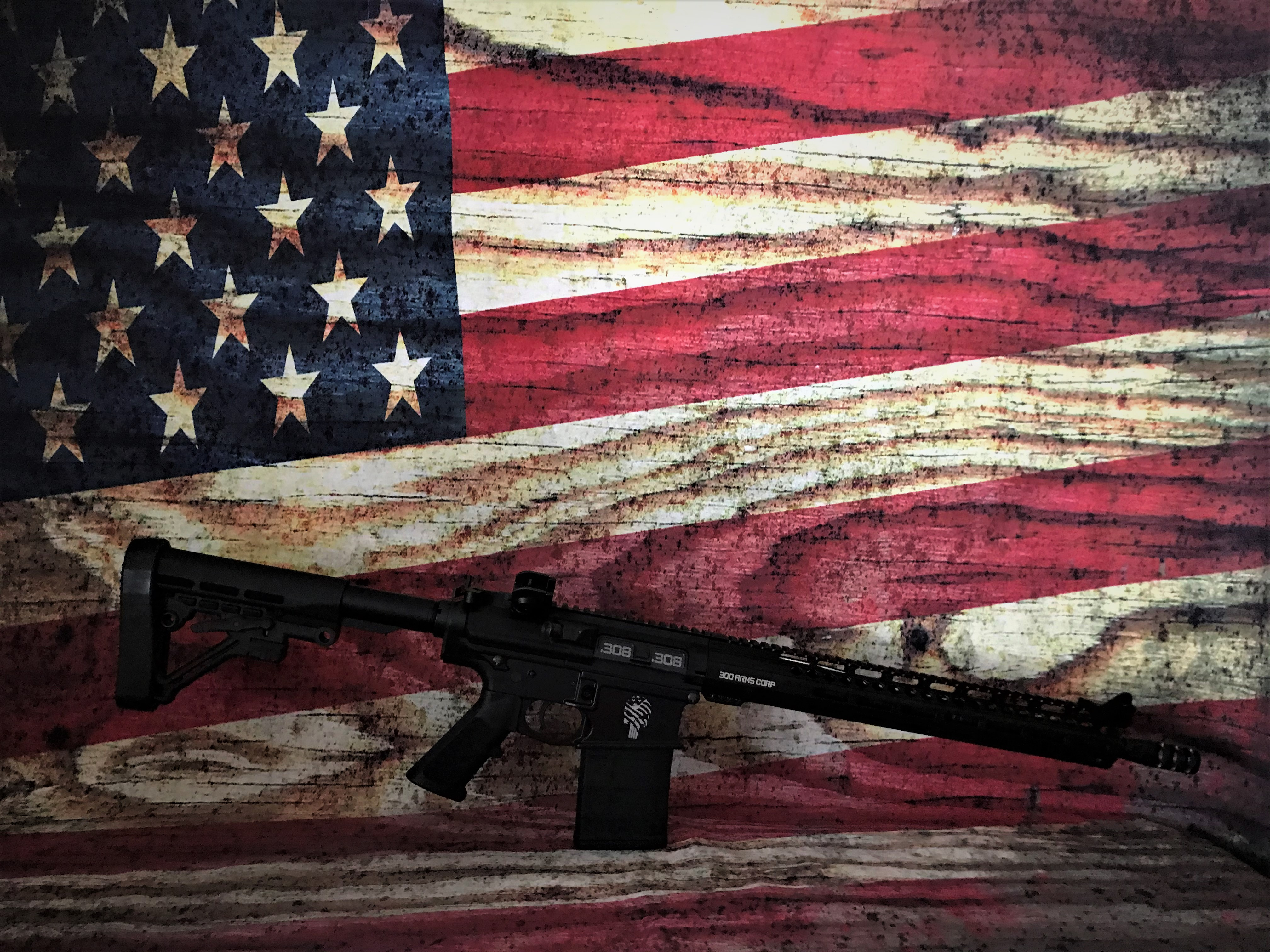 Custom Tattered Flag Punisher .308