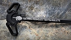 R-10 Dual Ambidextrous Charging Handle-Too Many A$$ holes